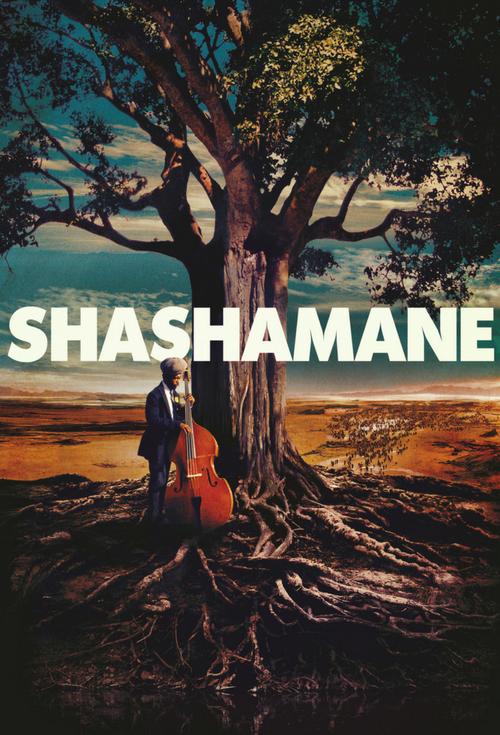 Shashamane